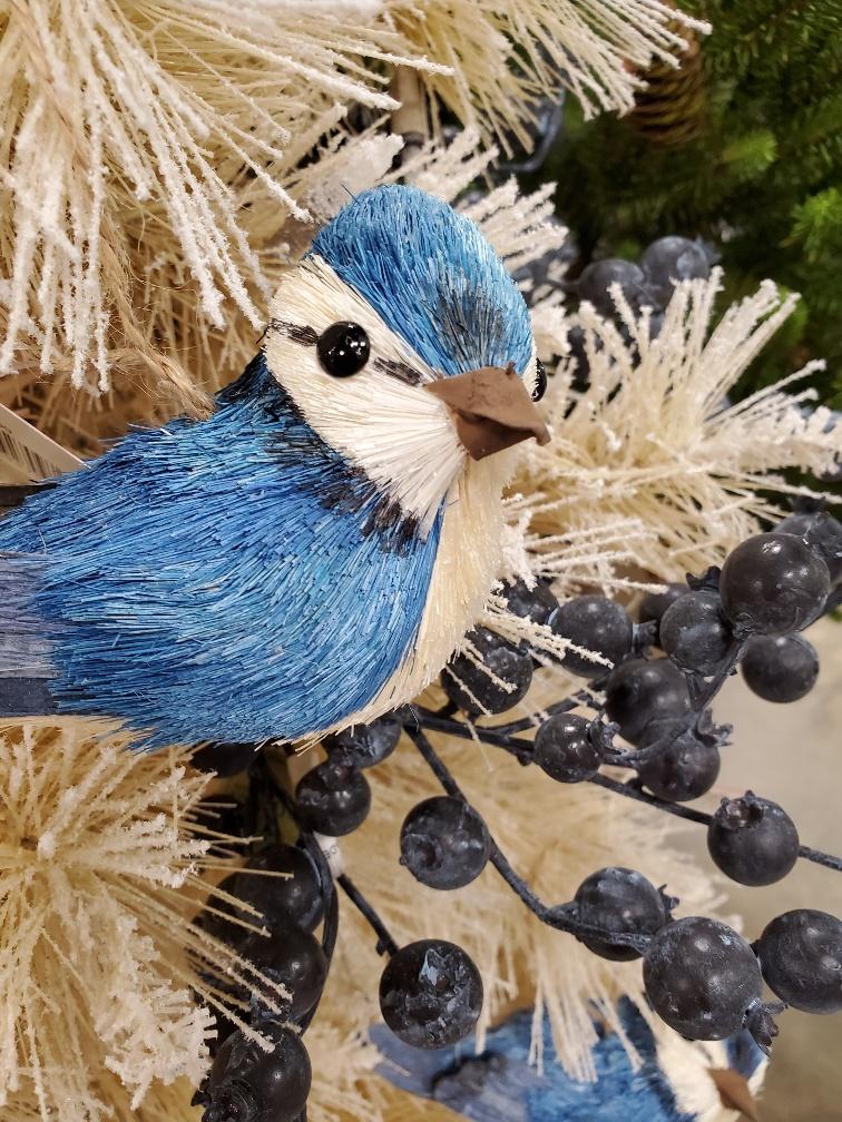 FEATHERS, BIRDS & BUTTERFLIES